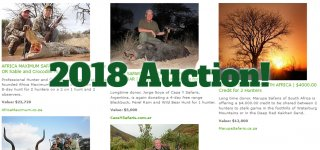 2018-sci-mi-auction.jpg